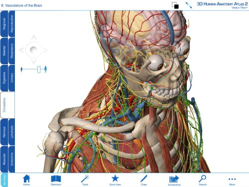 Amazon Visible Body 3d Human Anatomy Atlas 2 Download Software