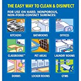 Clorox Commercial Solutions Disinfecting