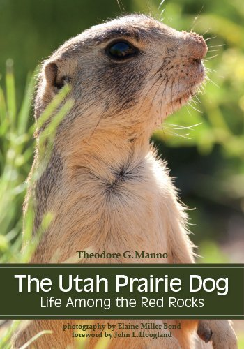 The Utah Prairie Dog: Life among the Red Rocks by Manno, Theodore G. (2014) Paperback (Dog Utah Prairie)