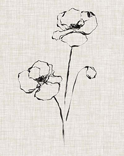 Floral Ink Study III by Ethan Harper Art Print, 18 x 22 inches