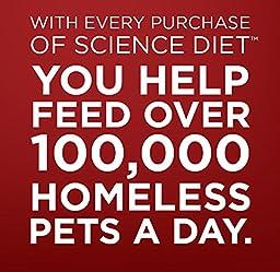 Hill\'s Science Diet Adult Sensitive Stomach & Skin Salmon & Vegetable Entrée Canned Dog Food, 12.8 oz, 12-pack