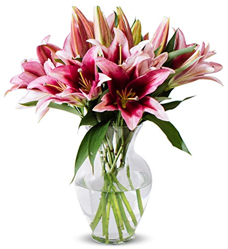 Benchmark Bouquets 8 Stem Stargazer Lily Bunch, With Vase (Fresh Cut Flowers) (Decor Lily Stargazer)