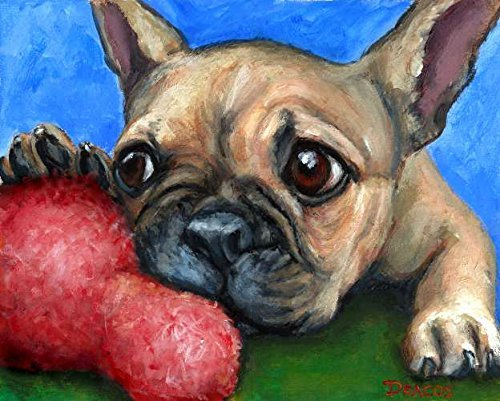 Dog Chewing Wall - French Bulldog Dog Art Print, Fawn Frenchie Bulldog Puppy, Chewing on Toy, Print of Original Dog Painting by Dottie Dracos, Print sizes from 8x10