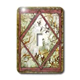 3dRose LLC lsp_36524_1 Shabby Vines and Frames Single Toggle Switch