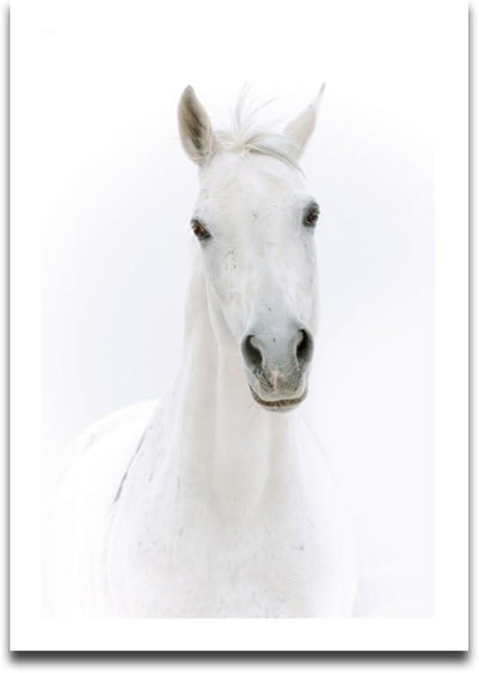 Fornateu Aceite Blanco Pintura del Caballo Cartel de la Lona impresión de HD artístico Animales Cuadro de la Pared sin Marco Sala de Dibujo Aceite