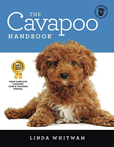 The Cavapoo Handbook: The Essential Guide for New & Prospective Cavapoo Owners (Canine Handbooks) by Independently published