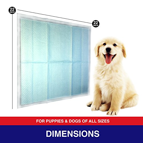 Pouty Pets 100 Puppy Pads - Disposable & Absorbent Training Pad Dogs - Leak-Proof, Tear Resistant, Odor-Eliminating & Anti-Bacterial Potty Pads Pet Attractant - Absorbs Dog Pee Quickly by Pouty Pets (Image #3)