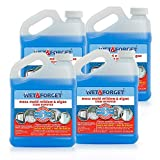 Wet and Forget 800003 Wet and Forget Moss Mold Mildew & Algae Stain Remover (4-(Pack))