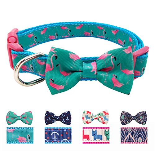 azuza Dog Collar with Bowtie, Stylish and Comfortable Bow Tie Dog Collar for Small, Medium, Large Dogs