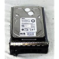 Dell Compatible 1TB 7.2K 6Gb/s 3.5 SAS HD -Mfg# 7KXJR (Comes with Drive and Tray)