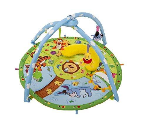 Winnie Pooh Magic Motion Playgym