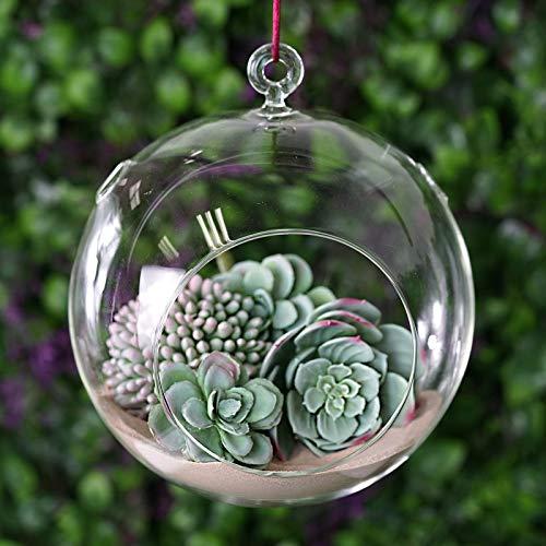 Efavormart 4 pcs 8 Diameter Clear Glass Globe Candle Holder Succulent Glass Terrarium