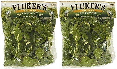 Fluker's Repta Vines-Pothos for Reptiles and Amphibians (2 Pack) by Fluker's