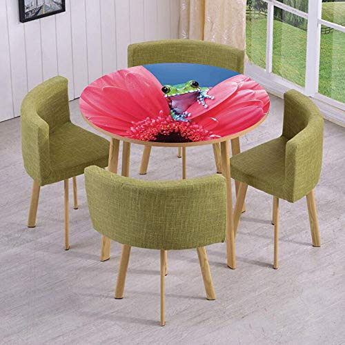 iPrint Round Table/Wall/Floor Decal Strikers,Removable,Cute Tiny Little Tree Frog on Gerbera Flower Magical Nature Moments Shoots Art Photo,for Living Room,Kitchens,Office Decoration
