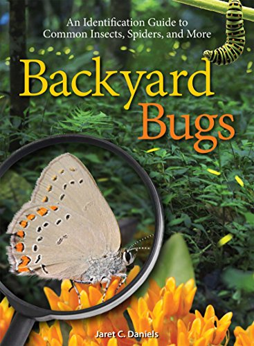 Backyard Bugs: An Identification Guide to Common Insects, Spiders, and