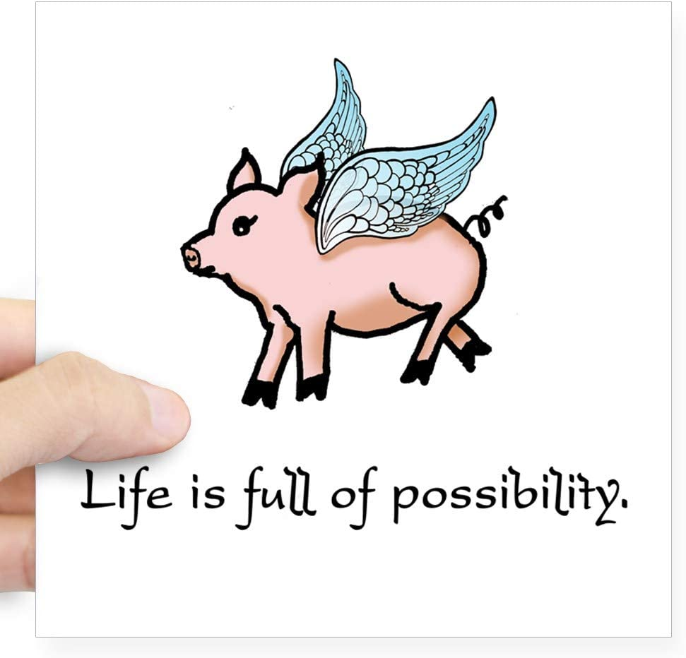 Flying pig vinyl sticker for wall laptop car decal decor fun removeable