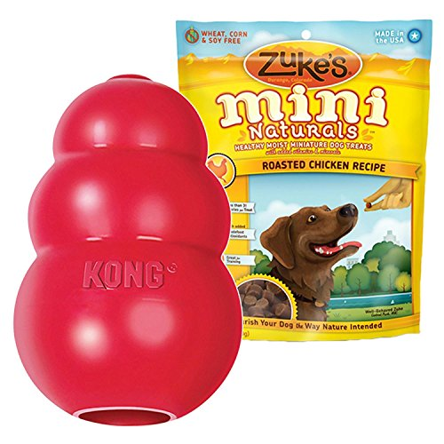 KONG CLASSIC LARGE Rubber Chew Toy For Dogs – World's Best Dog Toy (T1)