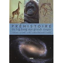 Préhistoire, du big bang aux grands singes : L'univers, la Terre, la vie, la biosphère avant l'Homme