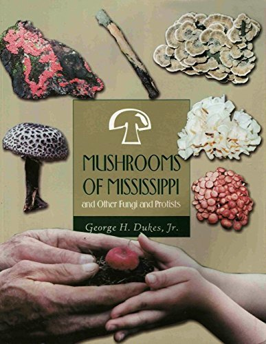 Download Mushrooms of Mississippi: And Other Fungi and Protists pdf epub