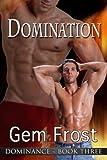 Domination (Dominance Book 3)