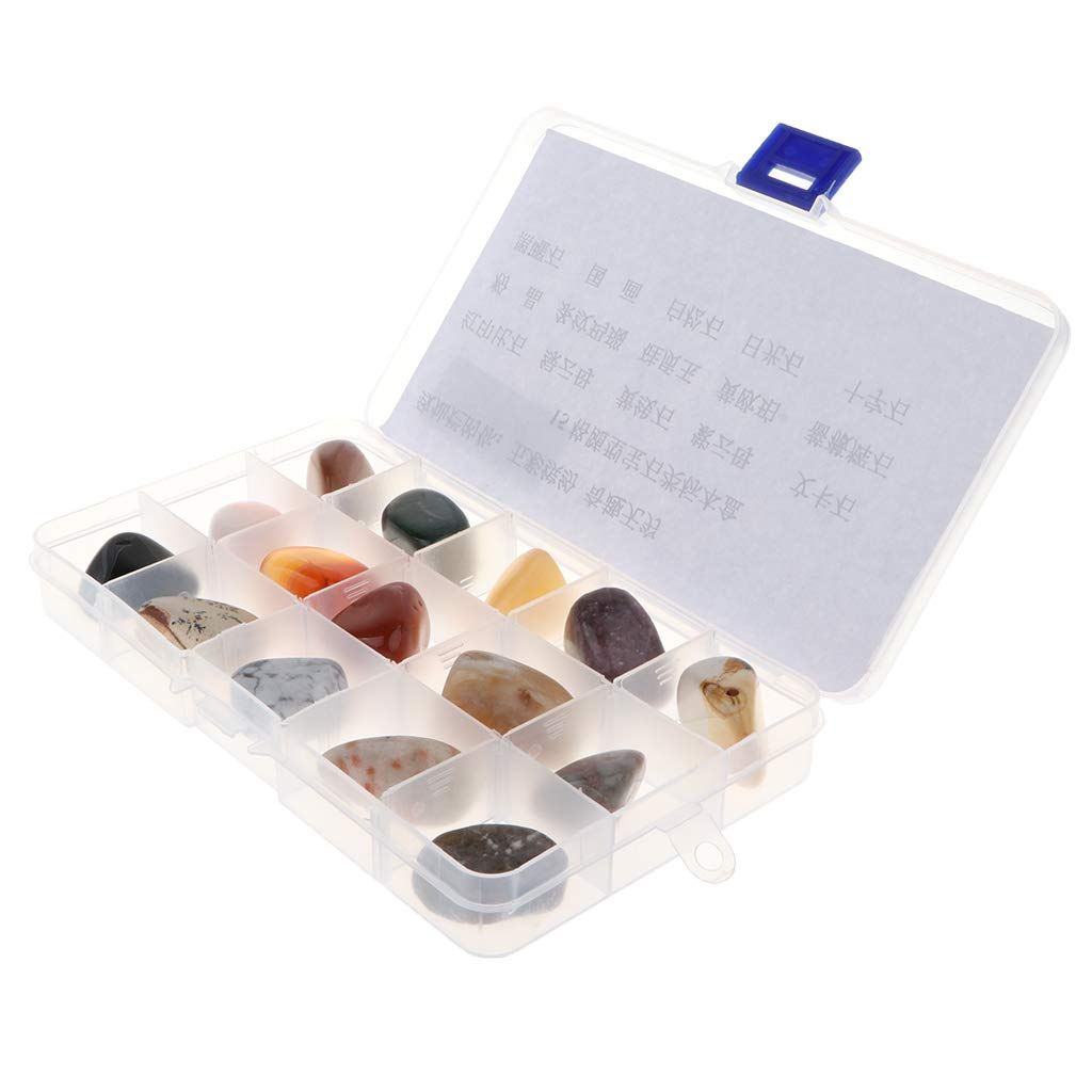 D DOLITY Geology Science Kit - Rock and Mineral Collection in Clear Collection Box