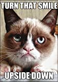 Ata-Boy Grumpy Cat 'Smile Upside Down' 2.5' x 3.5' Magnet for Refrigerators and Lockers