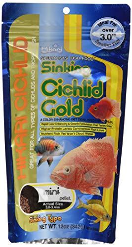 Hikari 12-Ounce Sinking Cichlid Gold Pellets for Pets, Mini