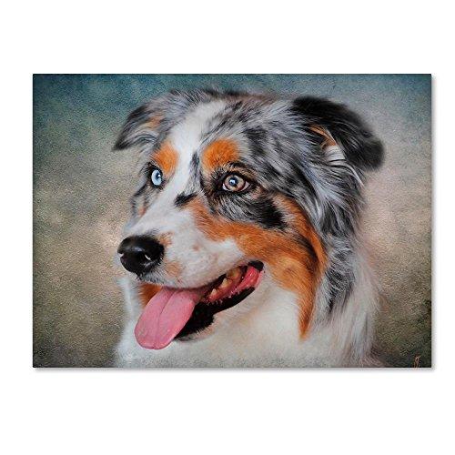 (Blue Merle Australian Shepherd Portrait by Jai Johnson, 14x19-Inch Canvas Wall)