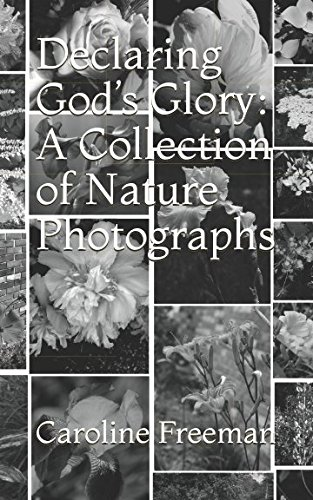 Declaring God's Glory: A Collection of Nature Photographs