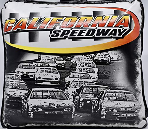 (2000 - California Speedway Vintage Stadium Seat Cushion - 12x13x4 Inches - Collectible - Rare)