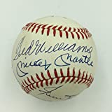Beautiful 500 Home Run Club Signed Baseball Mickey Mantle Ted Williams PSA DNA
