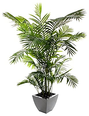 "Closer to Nature Artificial 6ft 6"" Areca Palm Tree - Artificial Silk Plant and Tree Range"