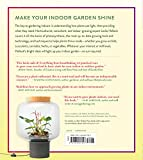 Gardening Under Lights: The Complete Guide for