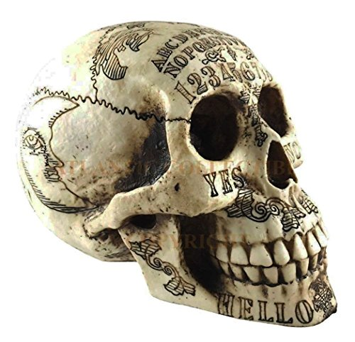 Ky & Co YesKela Paranormal Ouija Spirit Medium Skull Figurine Skeleton Occultist Sculpture 8.5'' L by Ky & Co
