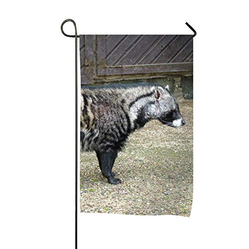 Custom Home Outdoor Garden Flag Animal Civet USA United States Decorative Garden Flags 12 x 18 inch ()