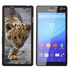 EJOOY---Cubierta de la caja de protección para la piel dura ** Sony Xperia C4 ** --Bebé Leopardo Cub Madre Cute Puppy