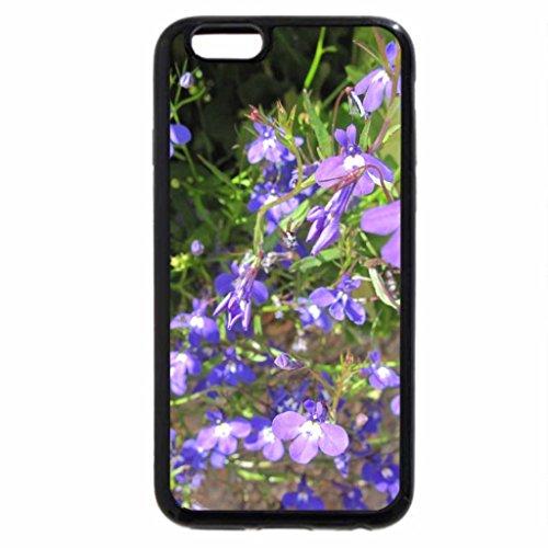 iPhone 6S / iPhone 6 Case (Black) mini purple flowers on my acres