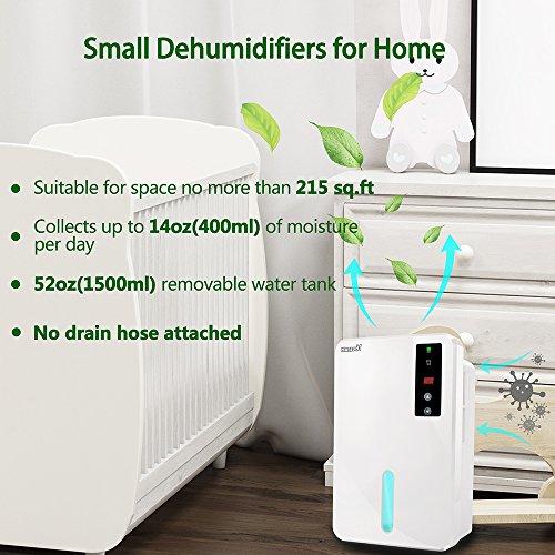 Buy budget dehumidifier