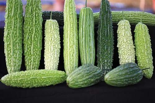 HONIC 20 Piezas Mezcla de Verduras Calabaza amarga, Plantas en ...