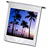 Best 3dRose Beaches Shirts - 3dRose Sunset on Waikiki Beach Oahu, Hawaii, USA Review