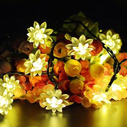 Aluvee Solar String LED Lights Lotus Flower 19.7 feet 30 LED Waterproof Solar Powered LED Party Lights for Garden Christmas Gardens Wedding Party Decoration 2 Modes(Warm White)