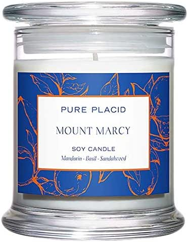 Mount Marcy Soy Candle