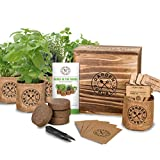 outdoor garden starter kit - Indoor Herb Garden Starter Kit - Organic, Non GMO Herb Seeds - Basil Thyme Parsley Cilantro Seed, Potting Soil, Pots, Scissors - DIY Grow Kits for Growing Herbs Indoors, Kitchen, Balcony, Window Sill