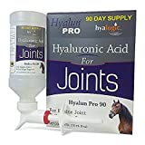 Hyalogic Hyaluronic Acid Horse Joint Supplement– 90 Day Supply Joint Support – Easy to Administer Hyalun 30mg Pure Hyaluronic Acid (HA) Equine Joint Supplement & Cartilage Supplement