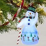 Hallmark Keepsake Keepsake Ornament
