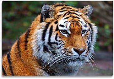 """Rutschfeste Design-Schreibunterlage """"Tiger"""" 50 x 34 cm, aus DA-Media in Premium-Qualität, Malunterlage, Schreibtischauflage, Schreibtischunterlage"""