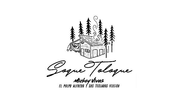Soque Toloque (feat. El Pulpo Alfredo & Sus Teclado) de ...