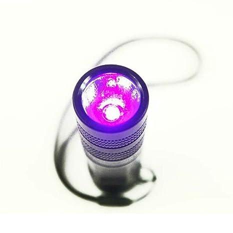 Mascotas Detector de Orina manchas Detector de Ultra Violet Blacklight antorcha lámpara WF-602 C