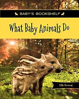 What Baby Animals Do Baby S Bookshelf Book 1