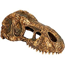 Exo Terra T-Rex Skull, Small